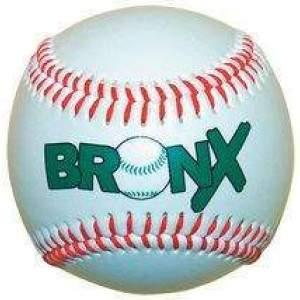 Bronx Safe Baseball by Podium 4 Sport
