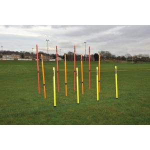 Precision Training Telescopic Boundary Poles-0