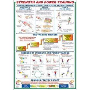 Strength And Power Training Chart by Podium 4 Sport by Podium 4 Sport