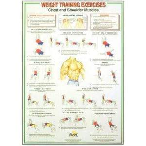 Dumbbell And Barbell Weigh Training Instruction Charts (set of 6) by Podium 4 Sport
